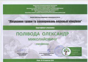 Поливода Александр Николаевич dip1 0032 300x212